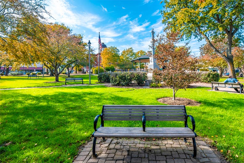 A bench and trees in Woodstock Square in Woodstock, Illinois